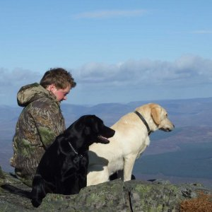 Dogs enjoy Schiehallion